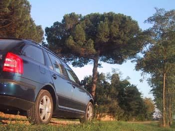 Octavia Combi. 105 PS, Dieselmotor