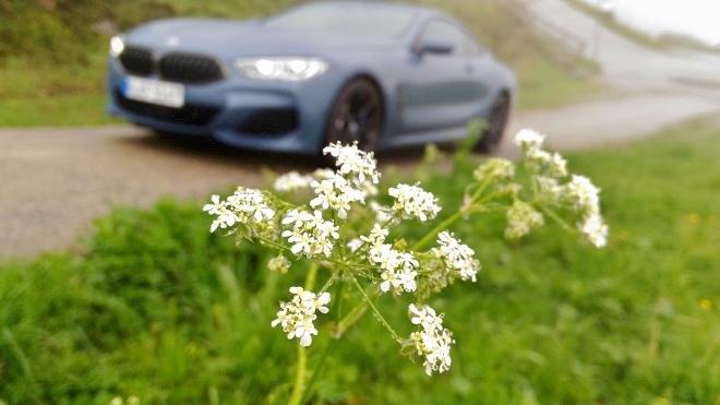 BMW 8er Coupé 840d Test