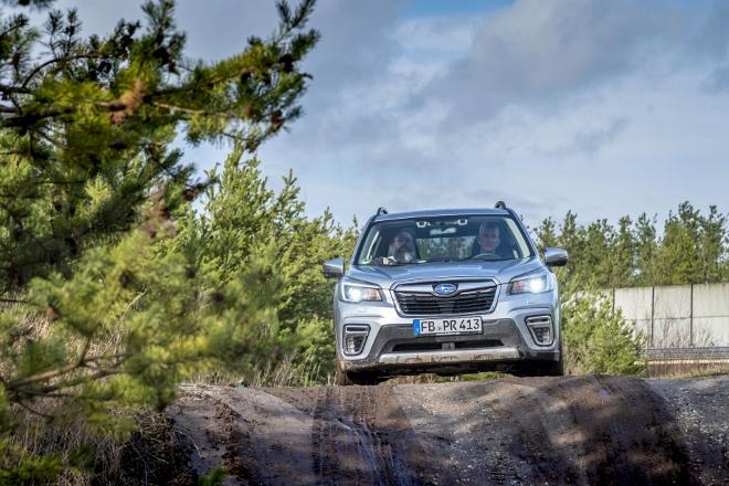 Subaru Forester Hybrid e Boxer von vorne