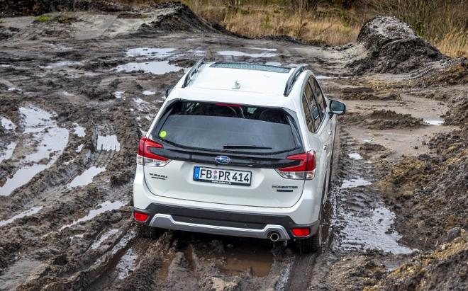 Subaru Forester Hybrid e Boxer im Gelände
