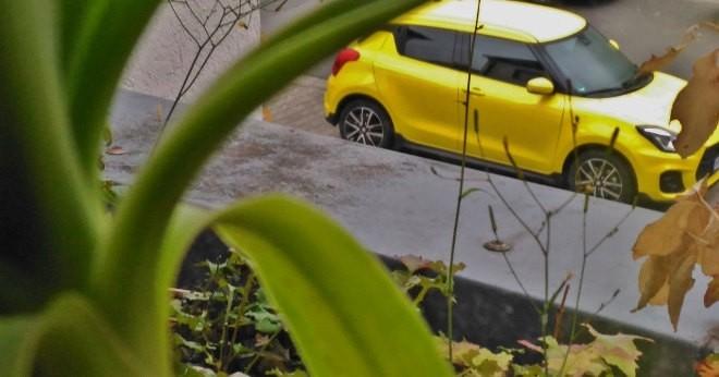 Suzuki Swift Sport 2019 in der Seitenansicht in gelb