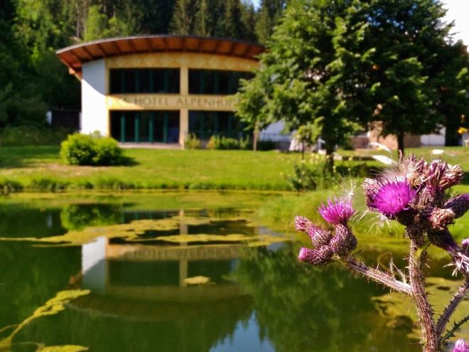 Walchhofer´s Alpenhof in Filzmoos, Pools